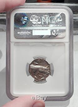 ATHENS Attica Greece Athena Owl Tetradrachm Ancient Silver Greek Coin NGC i59981