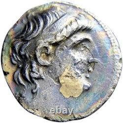 Pièce De Monnaie Grecque Antique Authentique Certifiée Rare Seleukids Antiochus VII Tetradrachm