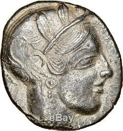 Rarissime Numéro Egypte Owl Ngc Ch Xf 4/5 3/5 Type Attica. Athènes. 072